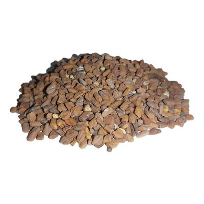 Pískavice řecké seno semena 30g